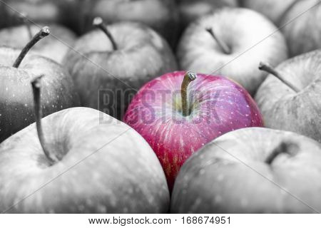 Red Apples / Red Delicious. Healthy Fruits. Fresh Apples. Apples with a high vitamin C content.  Close-up of red Apples