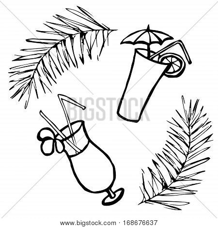 Tropical cocktails in glass, two types, with umbrella, flower and straw poll. Vector illustration isolated on white