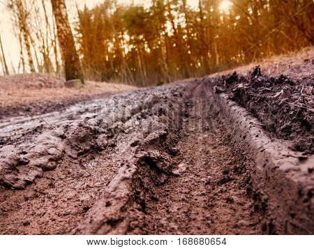 The track in the mud on the village dirt road