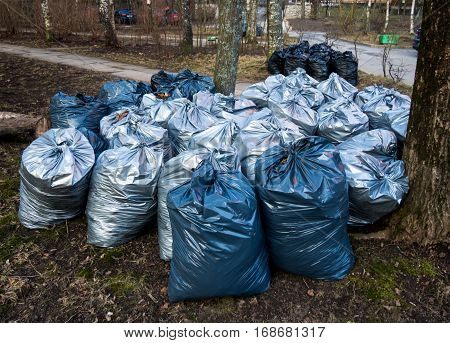 Plastic bags with trash after harvesting in the park