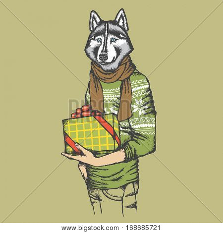 Vector dog concept. Hand draw husky dog on human body in sweatshirt with gift