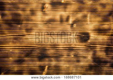 Burnt Wooden Texture