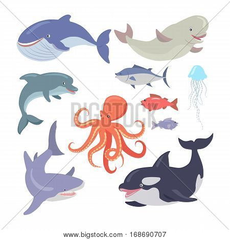 Sea life creatures vector set. Whale, shark, octopus, seals, jellyfish, hake, salmon, dolphin. Sea cartoon inhabitants in flat style design. Sea life animals on white background. Vector illustration
