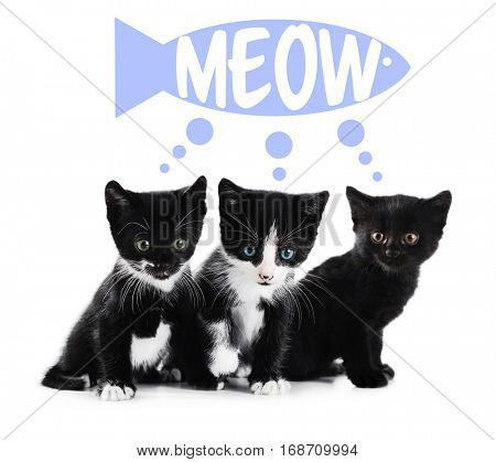 Cute kittens and word MEOW on white background