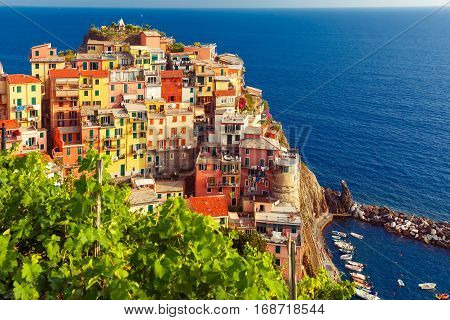 Aerial view of Manarola fishing village in Five lands, Cinque Terre National Park, Liguria, Italy.