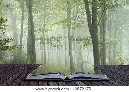 Lush Green Fairytale Growth Concept Foggy Forest Landscape Image Coming Out Of Pages Of Book
