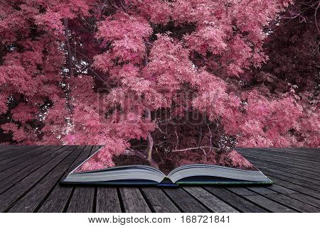 Stunning Alternate Vibrant Colorful Forest Landscape Tree Conceptual Image Coming Out Of Pages Of Bo