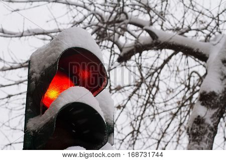 close of stop red traffic light covered in snow in winter time with trees in the background