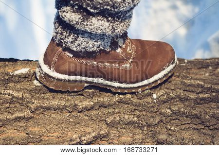 horizontal close up of brown boots with textile gaiters covered in snow stepping over a large tree crust in winter time concept for hiking