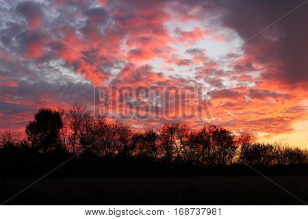 sunset sky over a field with silhouetted trees