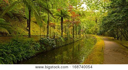 Garden alley along the water stream. Beautiful old park on Sao Miguel Island archipelago Azores Portugal.