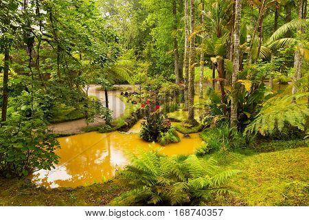 Beautiful Terra Nostra park with water streams and flora diversity. Old European garden on archipelago Azores Portugal.