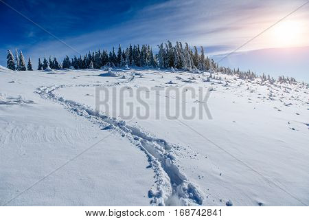 deep footprints in the snow, beautiful winter landscape