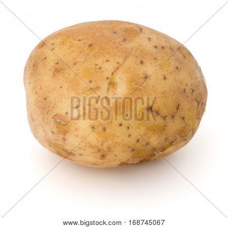 new potato tuber isolated on white background cutout.