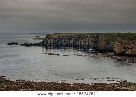North Coast Scotland - June 6 2012: The gray Atlantic Ocean crashes on the rocky brown cliffs near Dunnet Head lighthouse. Dark gray rainy sky. White dots on cliff are nesting birds. Brown rocky beach.