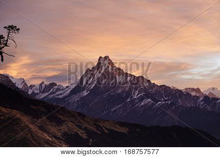 Beautiful Landscape Of Mount Machapuchare Covered With Snow And Ice And Illuminated With Pink Sunlig