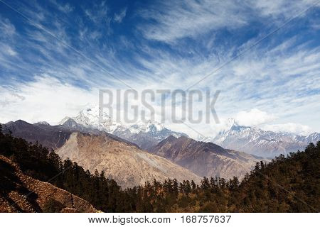 Wild Nature, Environment, Travel And Adventure Concept. Gorgeous Scenery Of Spacious Valley With Slo