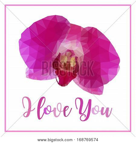 Low poly of pink purple orchid flower isolated on white background with word I love you
