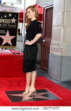 LOS ANGELES - JAN 11:  Amy Adams at the Amy Adams Star Ceremony at Hollywood Walk of Fame on January 11, 2017 in Los Angeles, CA