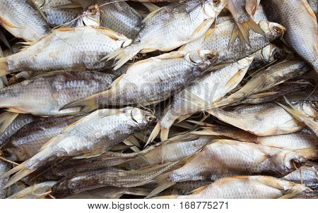 A lot of dried roach. Background of dried fish