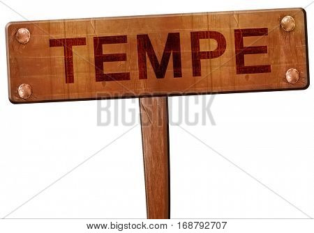 tempe road sign, 3D rendering