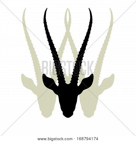 gazelles head vector illustration  set silhouette black