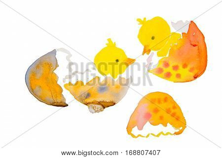 two easter chicks hatching from an egg isolated on white background