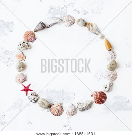 Marine composition. Sea shells sea star on white background. Flat lay top view square