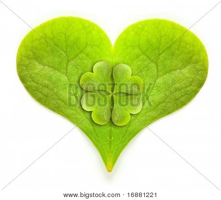 Green hearth with quarter-foil, symbol of a St Patrick day on a white background.