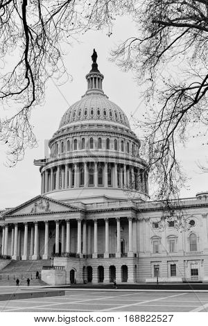United States Capitol Building in winter - Washington DC USA