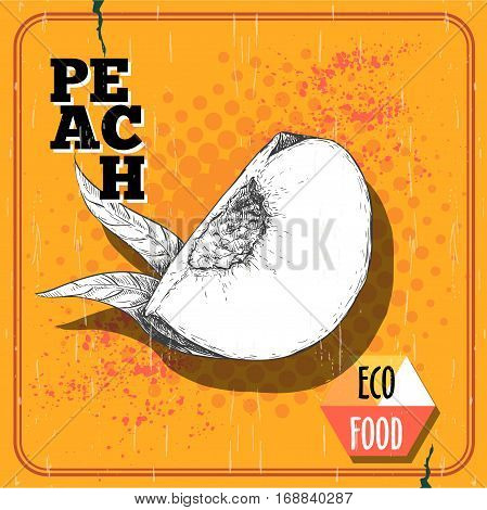 Hand drawn sketch style quarter of peach fruit with leaf. Vintage eco food vector poster. Yellow halftone background.