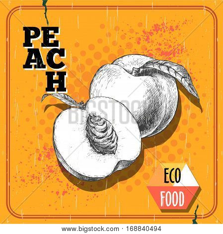 Hand drawn sketch style peach fruit. Vintage eco food vector poster. Ripe peach and peach half. Yellow halftone background