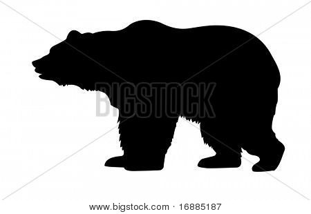 isolated silhouette bear on white background