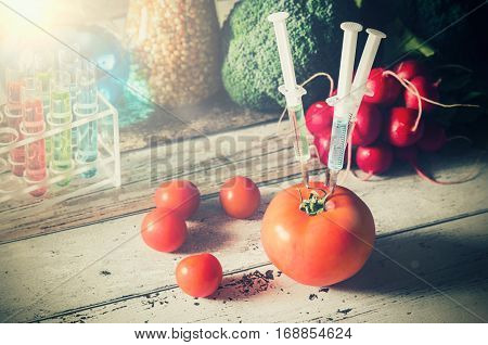 GMO genetically modified food concept on wooden background. Three syringes in tomato.