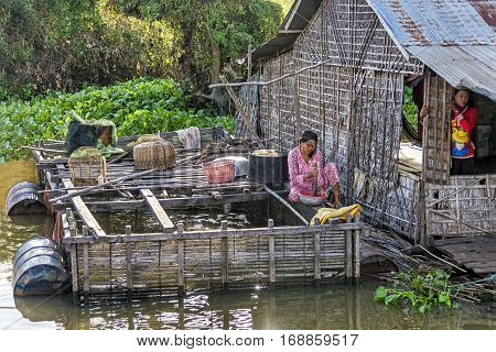 Tonle Sap lake, Cambodia - January 04, 2017: View of a woman working in her floating house. Tonle Sap refers to a freshwater lake that form the central part of cambodian hydrological system