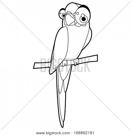 Cute funny cartoon style coloring bird illustration. Macaw