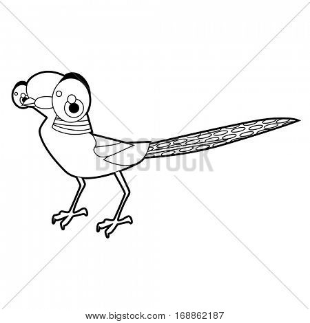 Cute funny cartoon style coloring bird illustration. Pheasant