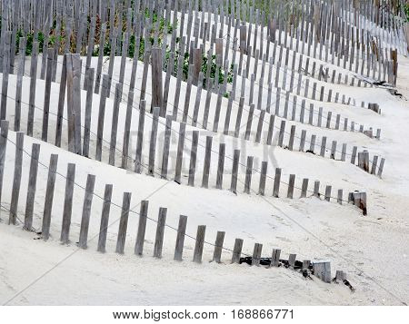 Rows of fence swallowed by sand sand at the beach
