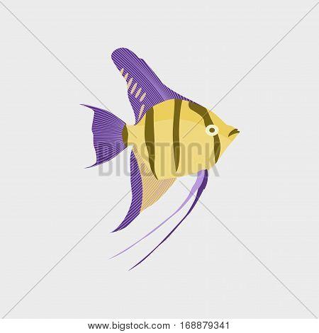Vector illustration in flat style fish angelfish
