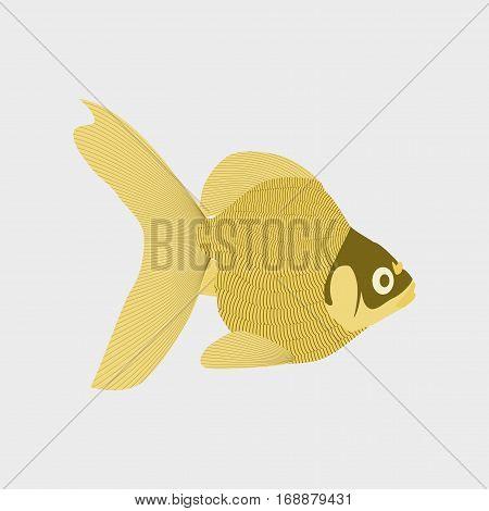 Vector illustration in flat style fish goldfish