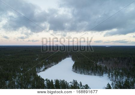 Aerial ascent flight over winter pine forest in dark evening after sunset, drone photo