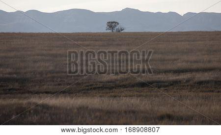 Badlands Canada Saskatchewan Big Muddy Panoramic Image