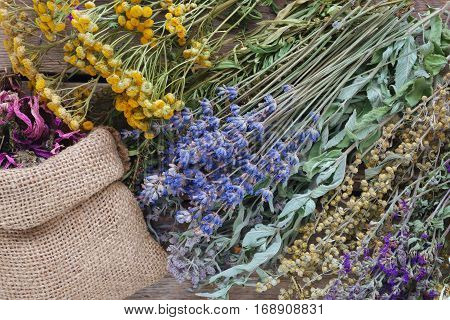 Medicinal Herbs And Bags Of Dry Healthy Coneflower On Aged Wooden Board. Herbal Medicine. Top View,