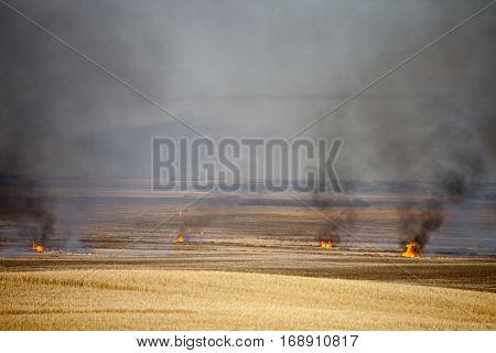 Prairie Stubble Burn in Saskatchewan Canada scenic