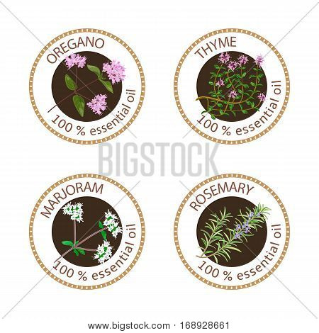 Set of 100 essential oils labels. Oregano, Thyme, marjoram, rosemary symbols. Logo collection. Vector illustration. Brown stamps, realistic. For cosmetics spa health care aromatherapy cosmetics