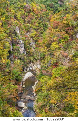 Naruko Gorge Valley with colorful foliage