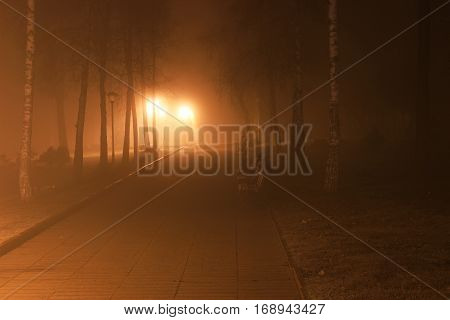 scary bench in the fog at night