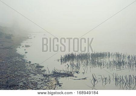 Landscape with fog over lake