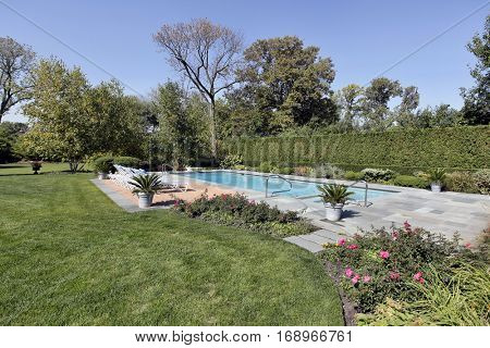Swimming pool in back yard of luxury home with chaise lounge chairs