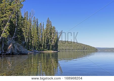 Quiet Lake in the Mountains on Shoshone Lake in Yellowstone National Park in Wyoming